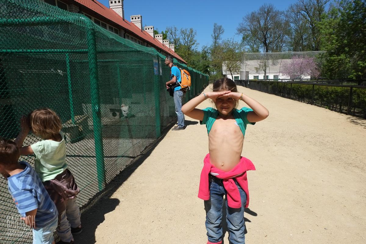 Заповедник Аскания Нова, Херсонщина, Украина