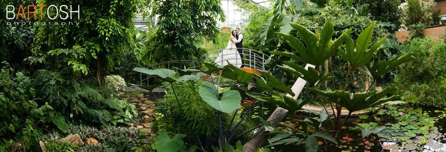 Свадебная фотосъесмка в ботаническом саду
