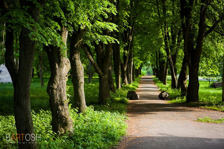 Автопутешествие по Украине. Самчики, Хмельницкая область. Фотобанк Украины