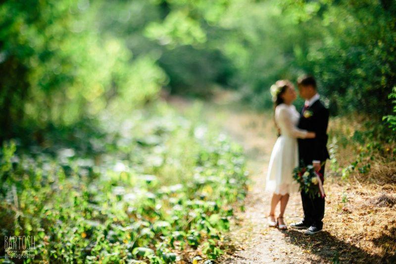 Весільні фото Катерини та Олексія. Весільний фотограф Київ