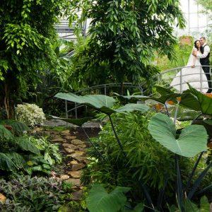 Свадебные фотографии Оксаны и Сергея
